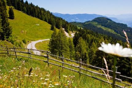 Sportberg Goldeck – Wandern am Millstätter See – Wanderurlaub in Kärnten – Frühstückspension am See – Pension Elisabeth
